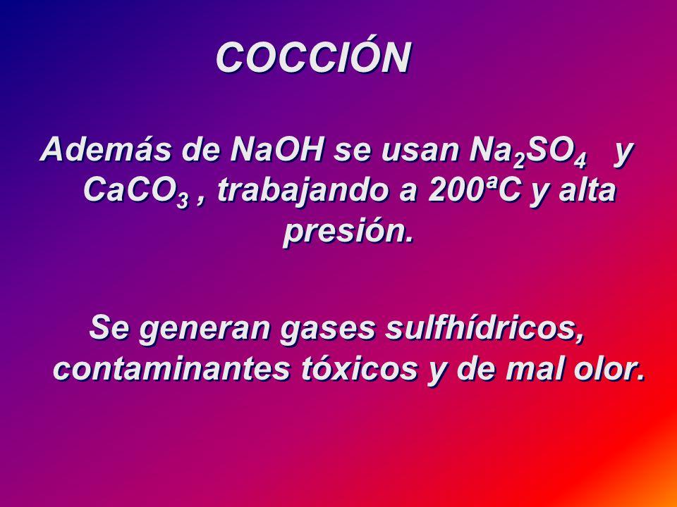 Se generan gases sulfhídricos, contaminantes tóxicos y de mal olor.