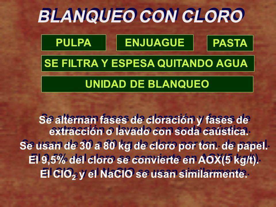 BLANQUEO CON CLORO PULPA ENJUAGUE PASTA