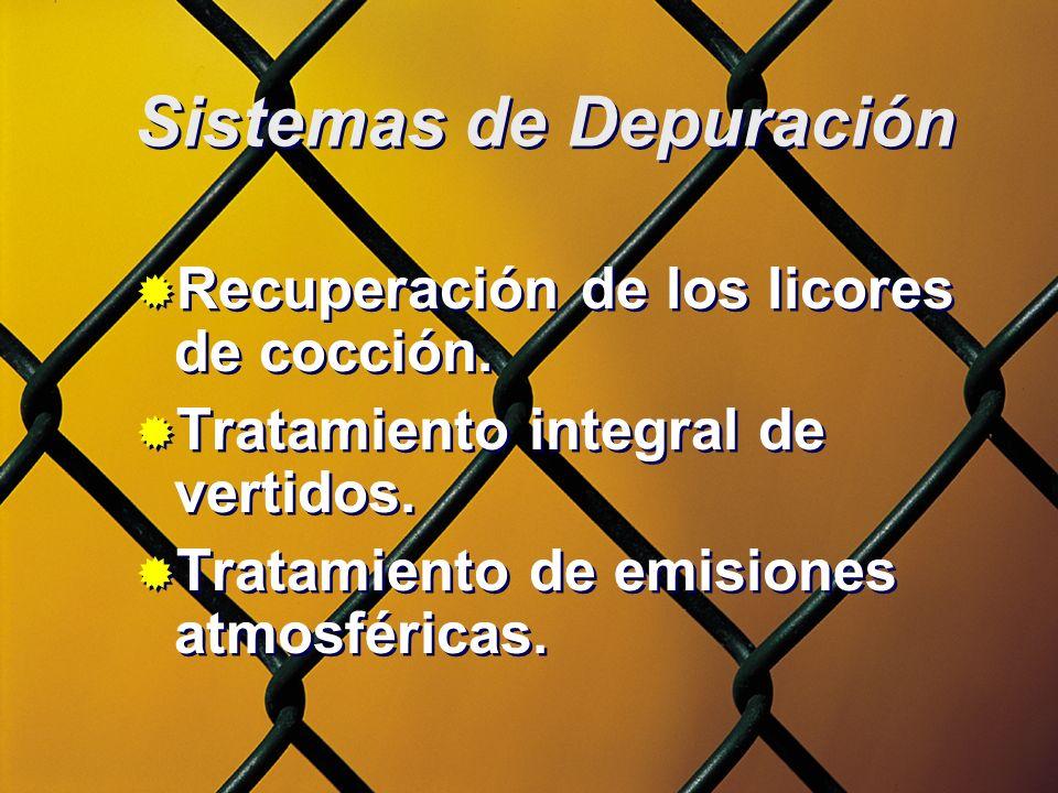 Sistemas de Depuración