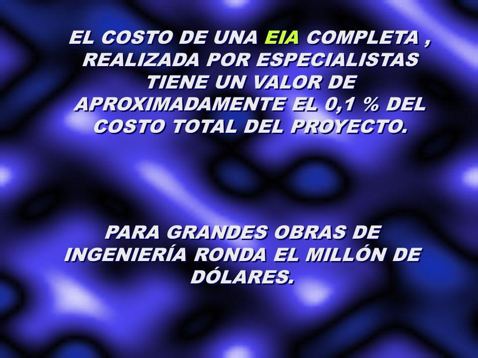 PARA GRANDES OBRAS DE INGENIERÍA RONDA EL MILLÓN DE DÓLARES.