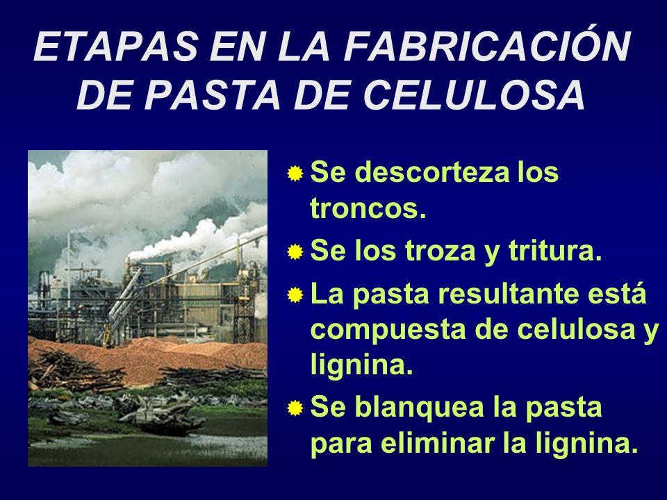 ETAPAS EN LA FABRICACIÓN DE PASTA DE CELULOSA