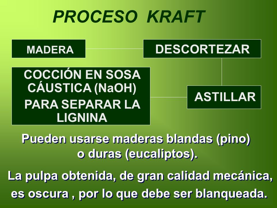 PROCESO KRAFT DESCORTEZAR COCCIÓN EN SOSA CÁUSTICA (NaOH)