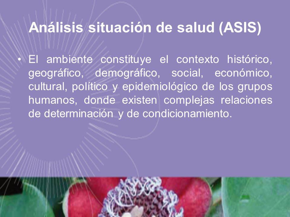 Análisis situación de salud (ASIS)