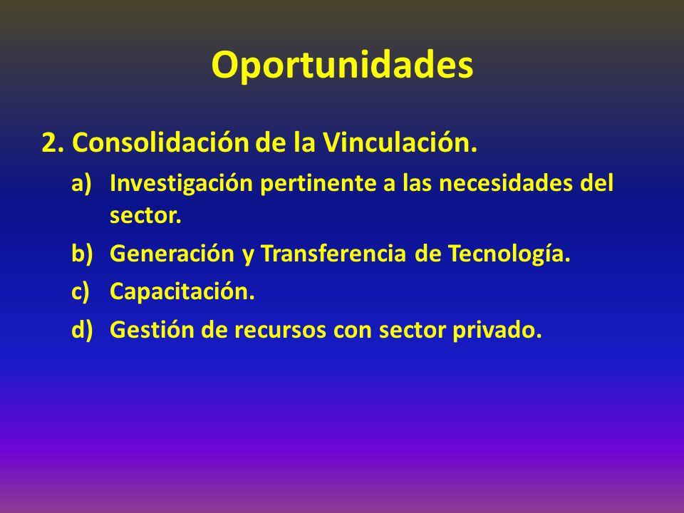 Oportunidades 2. Consolidación de la Vinculación.