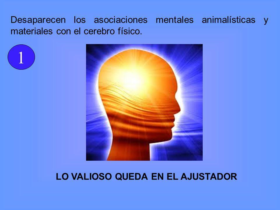 Desaparecen los asociaciones mentales animalísticas y materiales con el cerebro físico.