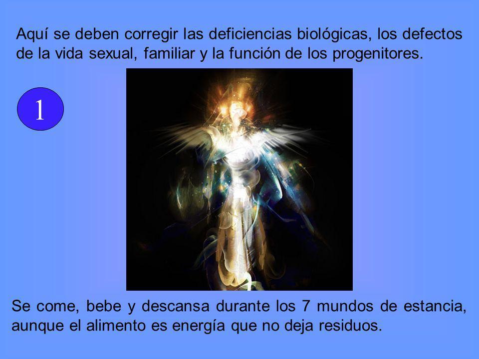 Aquí se deben corregir las deficiencias biológicas, los defectos de la vida sexual, familiar y la función de los progenitores.
