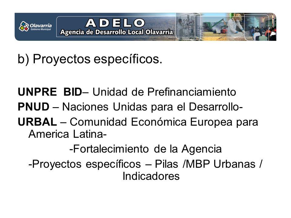 b) Proyectos específicos.