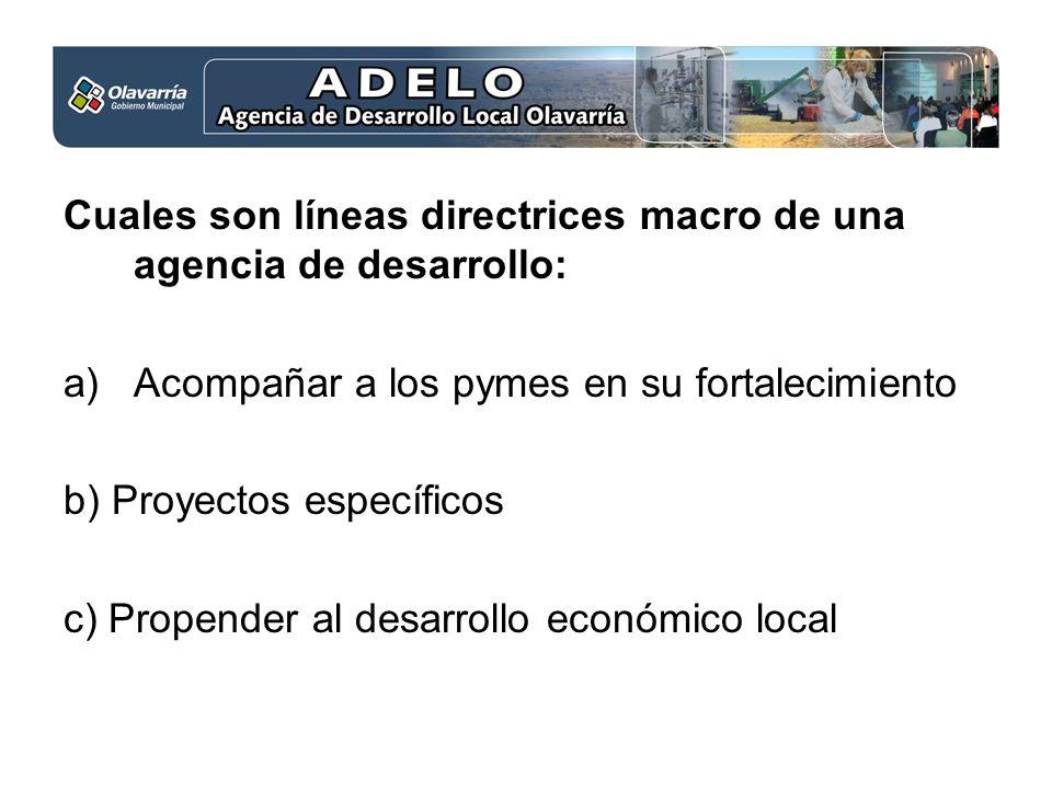 Cuales son líneas directrices macro de una agencia de desarrollo: