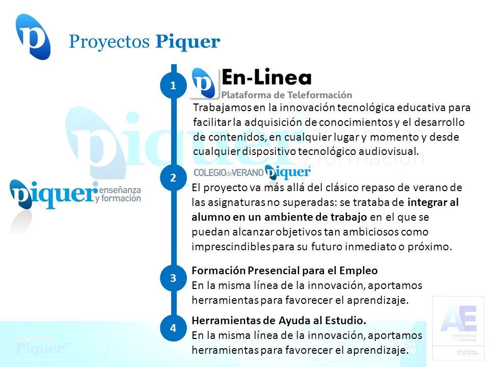Proyectos Piquer .