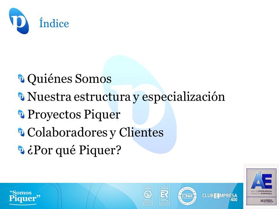 Nuestra estructura y especialización Proyectos Piquer