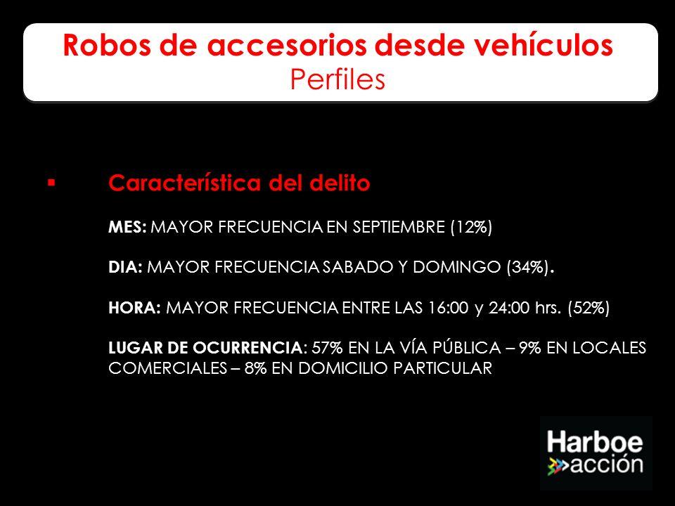 Robos de accesorios desde vehículos