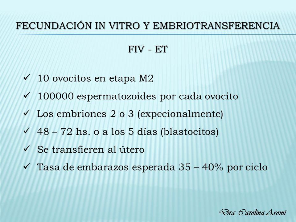 Fecundación in vitro y embriotransferencia