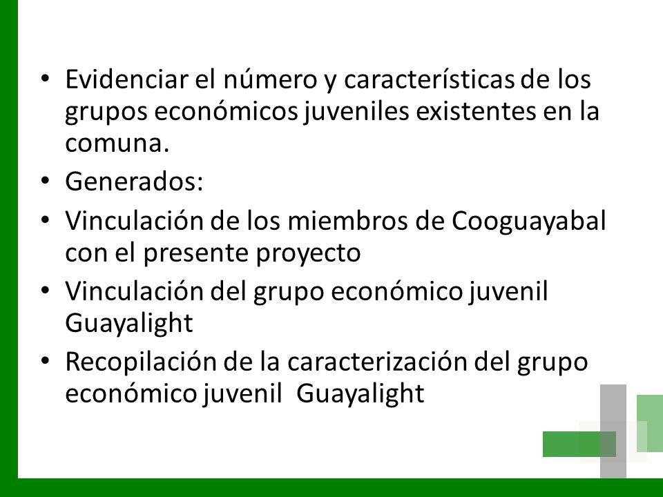Evidenciar el número y características de los grupos económicos juveniles existentes en la comuna.