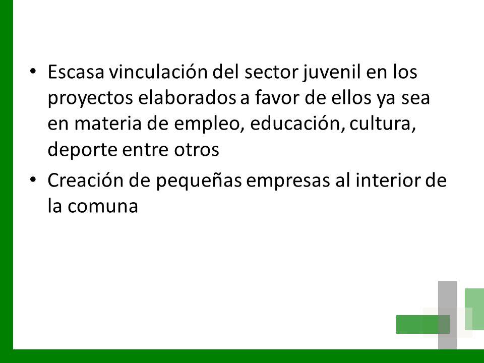 Escasa vinculación del sector juvenil en los proyectos elaborados a favor de ellos ya sea en materia de empleo, educación, cultura, deporte entre otros
