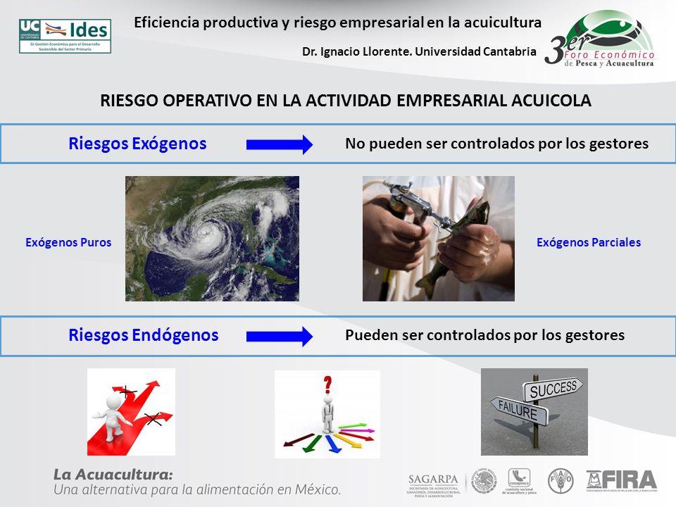 Eficiencia productiva y riesgo empresarial en la acuicultura