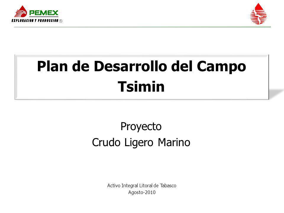Plan de Desarrollo del Campo Tsimin