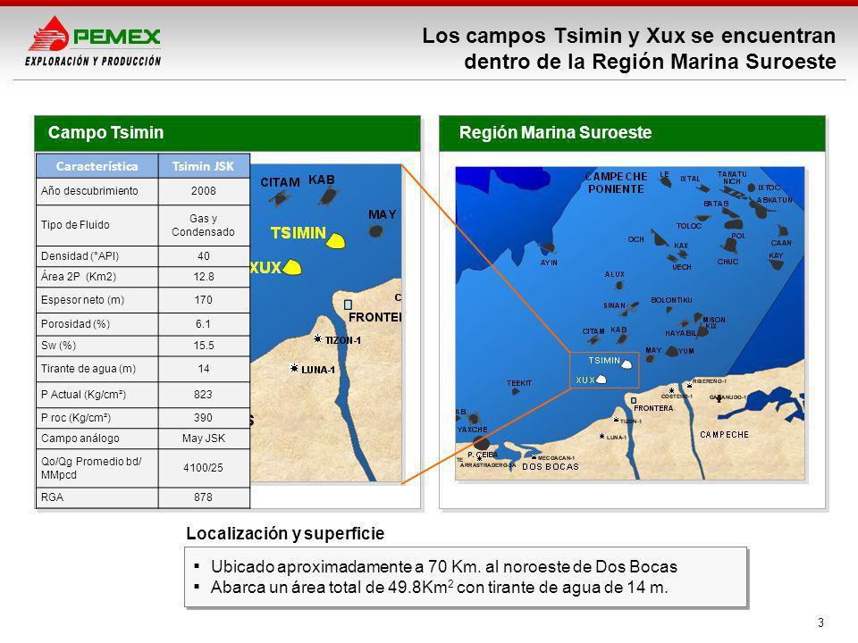 Los campos Tsimin y Xux se encuentran dentro de la Región Marina Suroeste