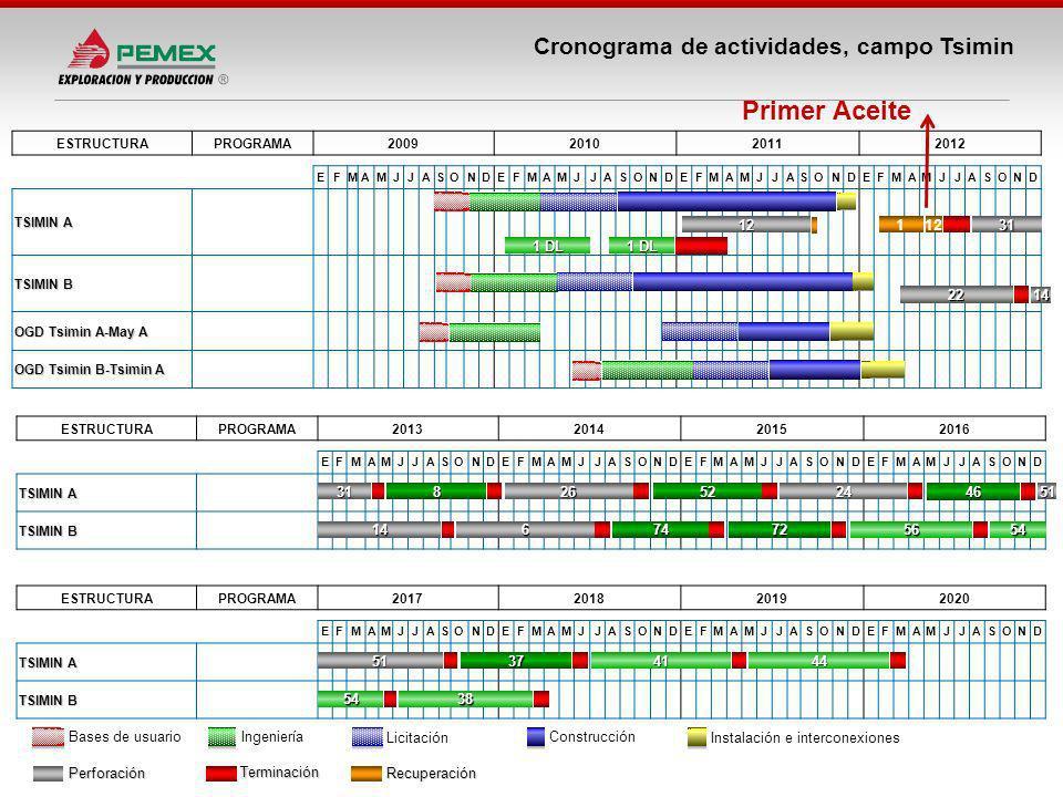 Primer Aceite Cronograma de actividades, campo Tsimin 12 1 12 31 1 DL