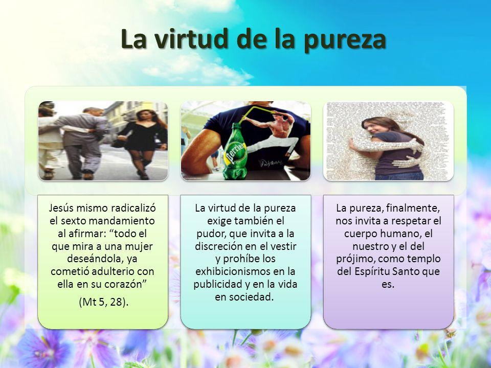 La virtud de la pureza