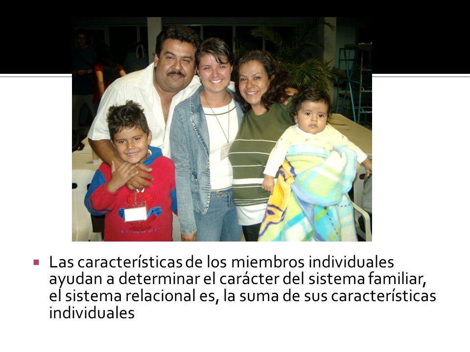 Las características de los miembros individuales ayudan a determinar el carácter del sistema familiar, el sistema relacional es, la suma de sus características individuales