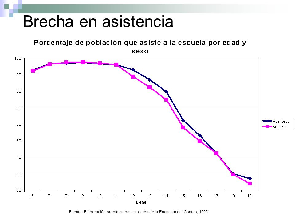 Brecha en asistencia Fuente: Elaboración propia en base a datos de la Encuesta del Conteo, 1995.