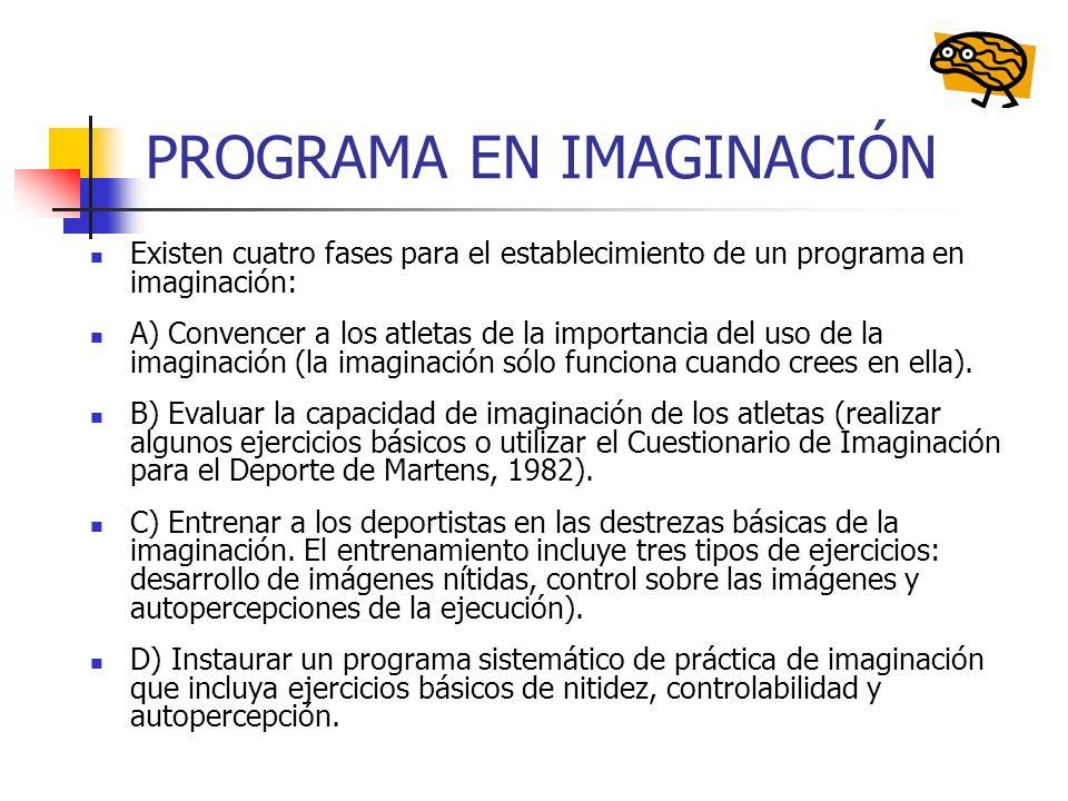 PROGRAMA EN IMAGINACIÓN