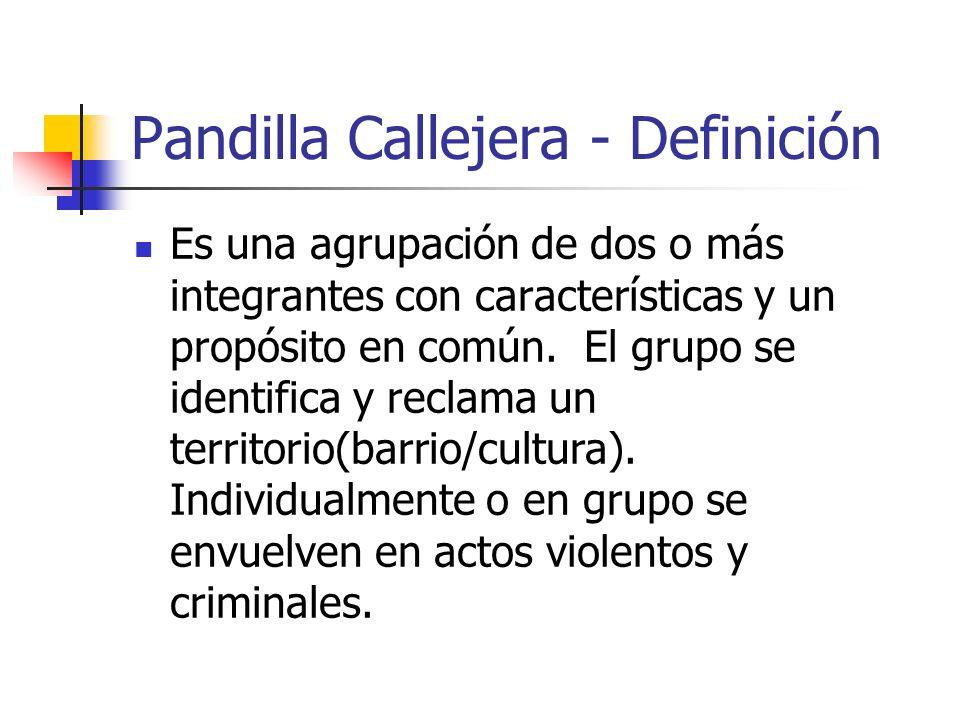 Pandilla Callejera - Definición