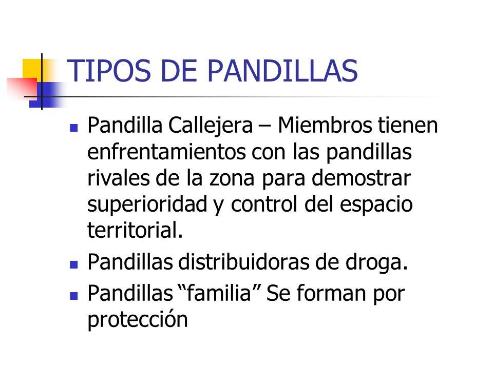 TIPOS DE PANDILLAS