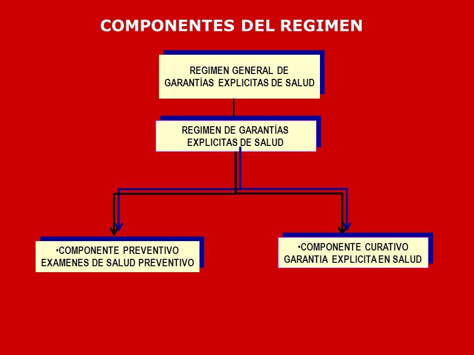 COMPONENTES DEL REGIMEN