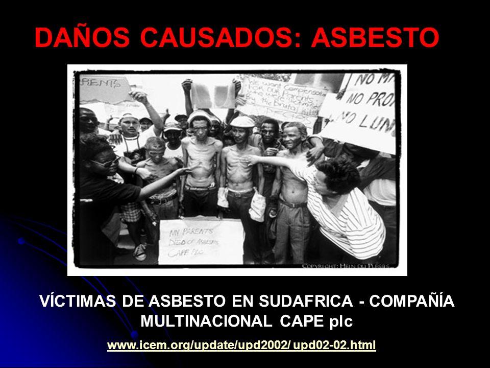 VÍCTIMAS DE ASBESTO EN SUDAFRICA - COMPAÑÍA MULTINACIONAL CAPE plc