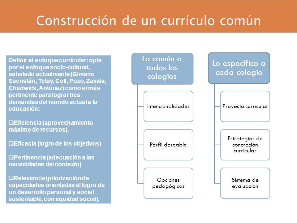 Construcción de un currículo común