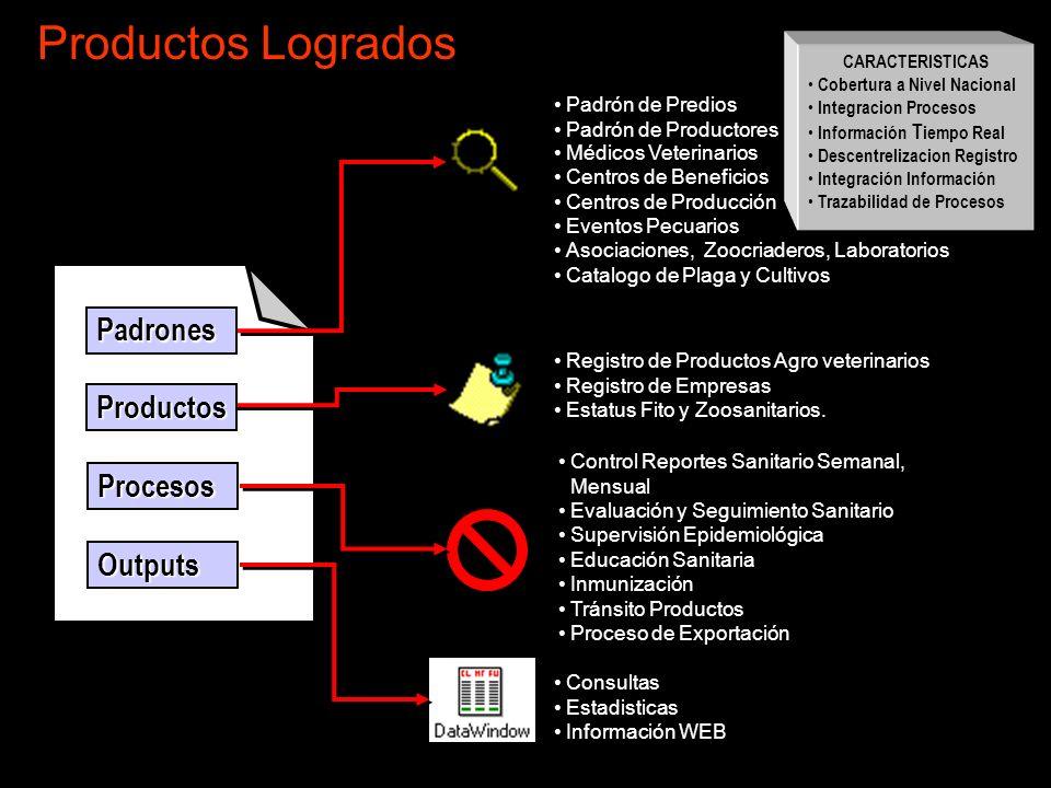 Productos Logrados Padrones Productos Procesos Outputs