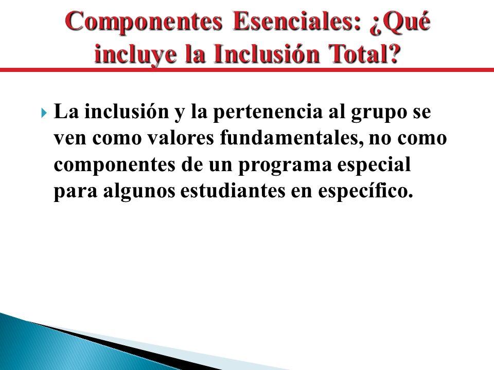 Componentes Esenciales: ¿Qué incluye la Inclusión Total