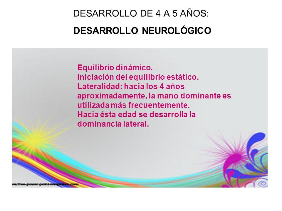 DESARROLLO DE 4 A 5 AÑOS: DESARROLLO NEUROLÓGICO