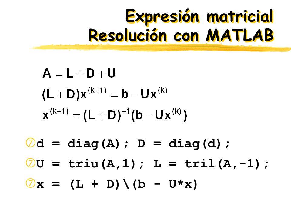 Expresión matricial Resolución con MATLAB