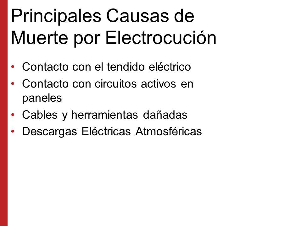 Principales Causas de Muerte por Electrocución