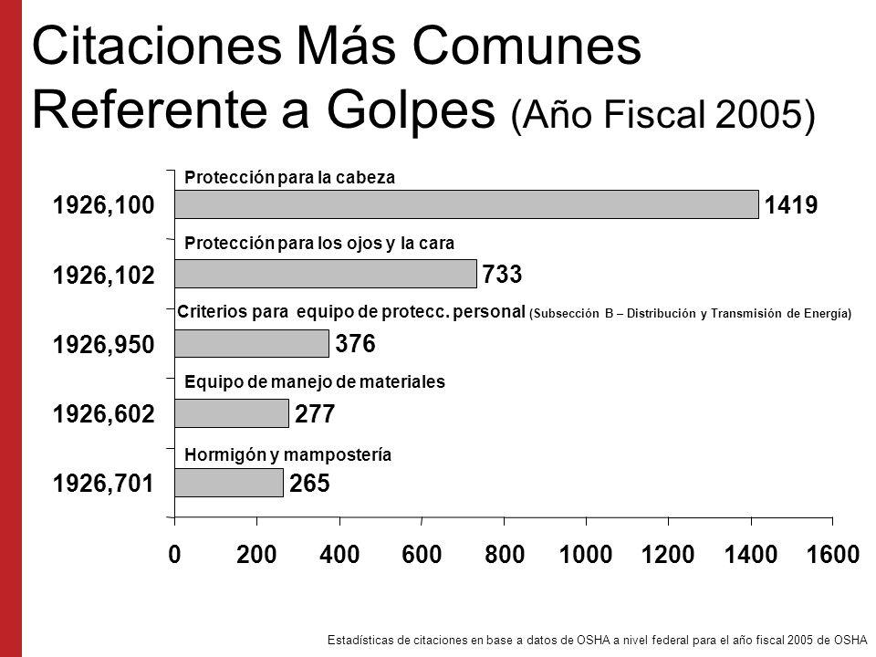 Citaciones Más Comunes Referente a Golpes (Año Fiscal 2005)
