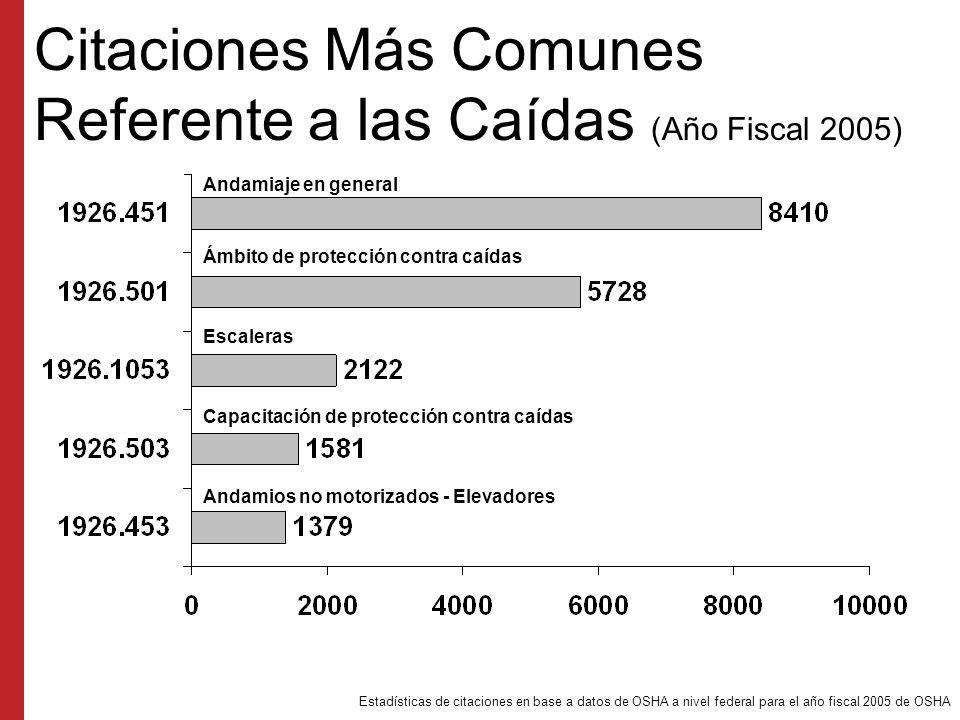 Citaciones Más Comunes Referente a las Caídas (Año Fiscal 2005)