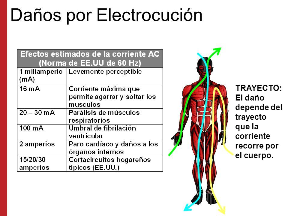 Daños por Electrocución