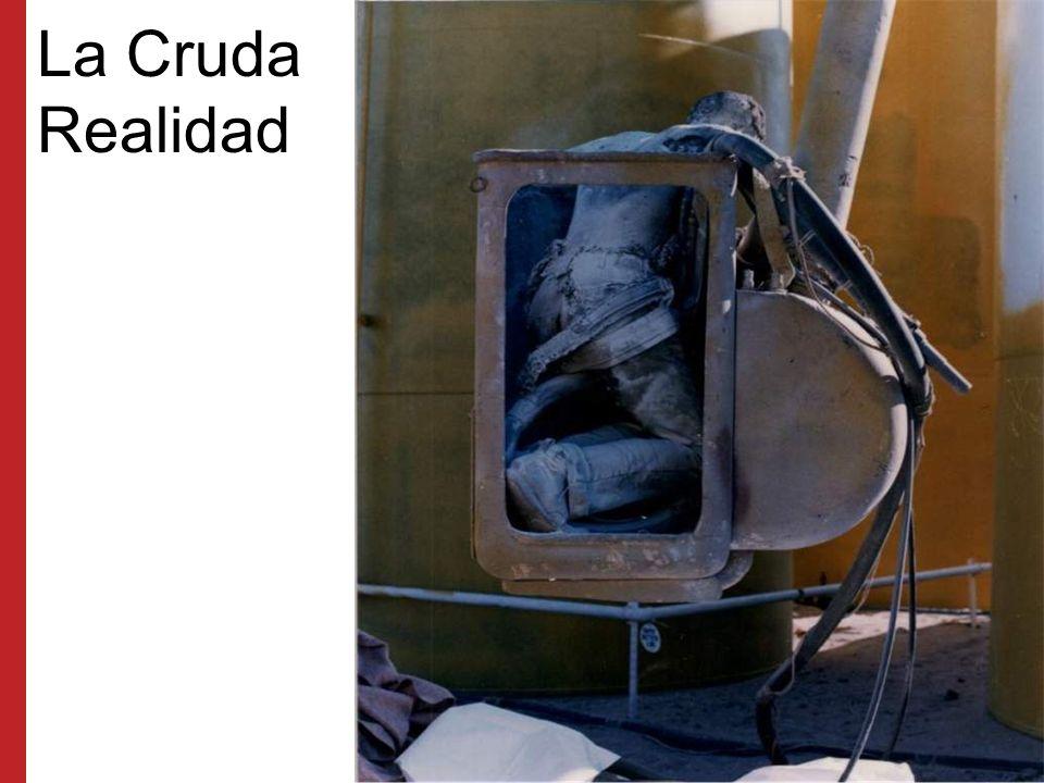 La Cruda Realidad Esta víctima tocó un cable del tendido eléctrico mientras trabajaba en un canasto aéreo.