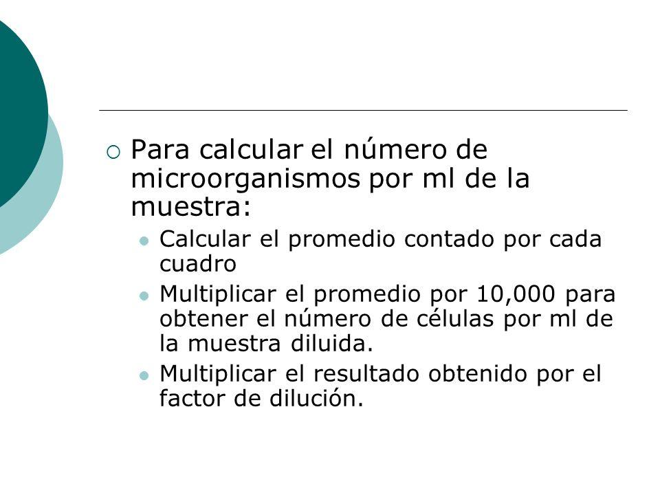 Para calcular el número de microorganismos por ml de la muestra: