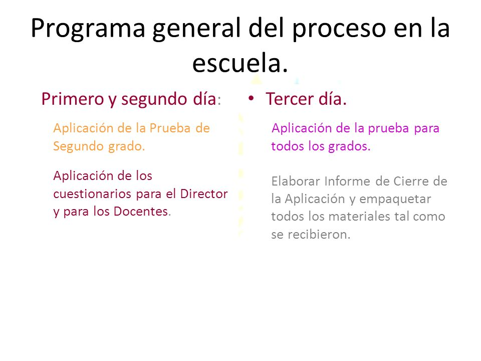 Programa general del proceso en la escuela.