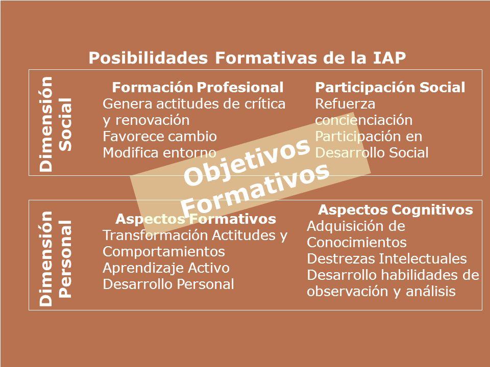 Posibilidades Formativas de la IAP