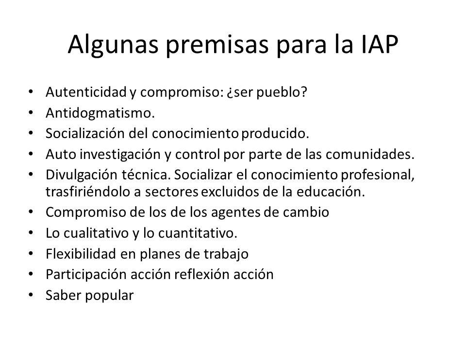 Algunas premisas para la IAP