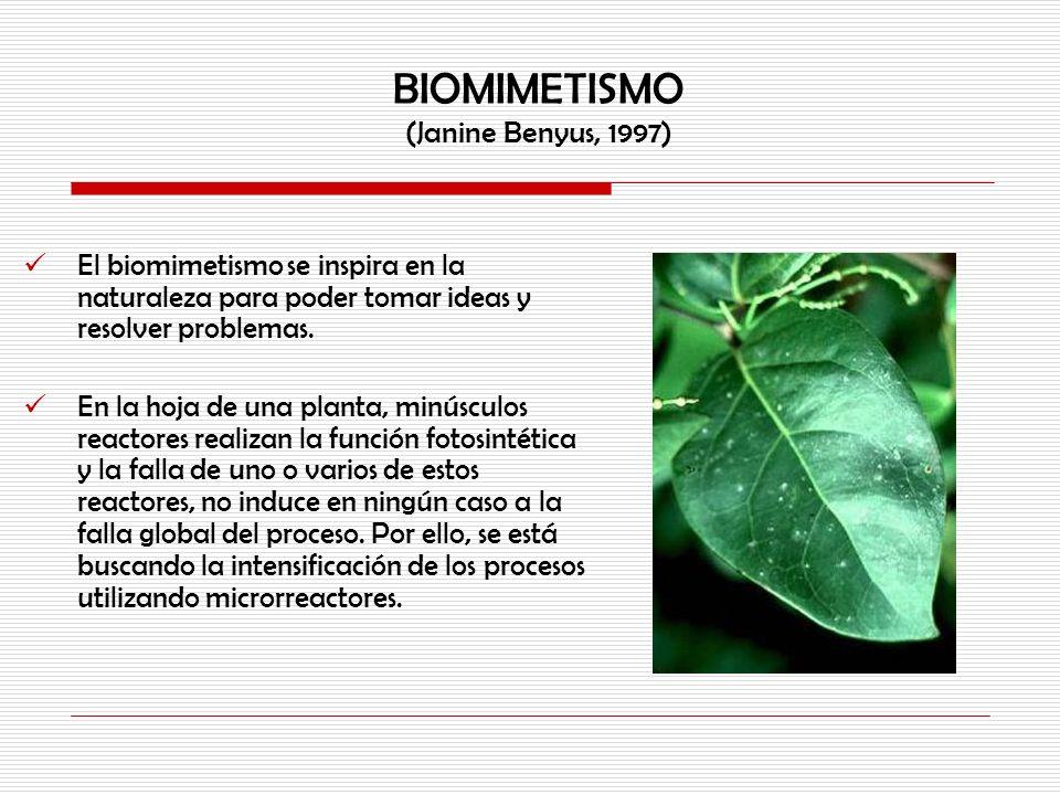 BIOMIMETISMO (Janine Benyus, 1997)