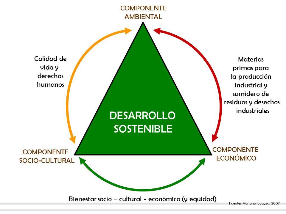 Bienestar socio – cultural - económico (y equidad)