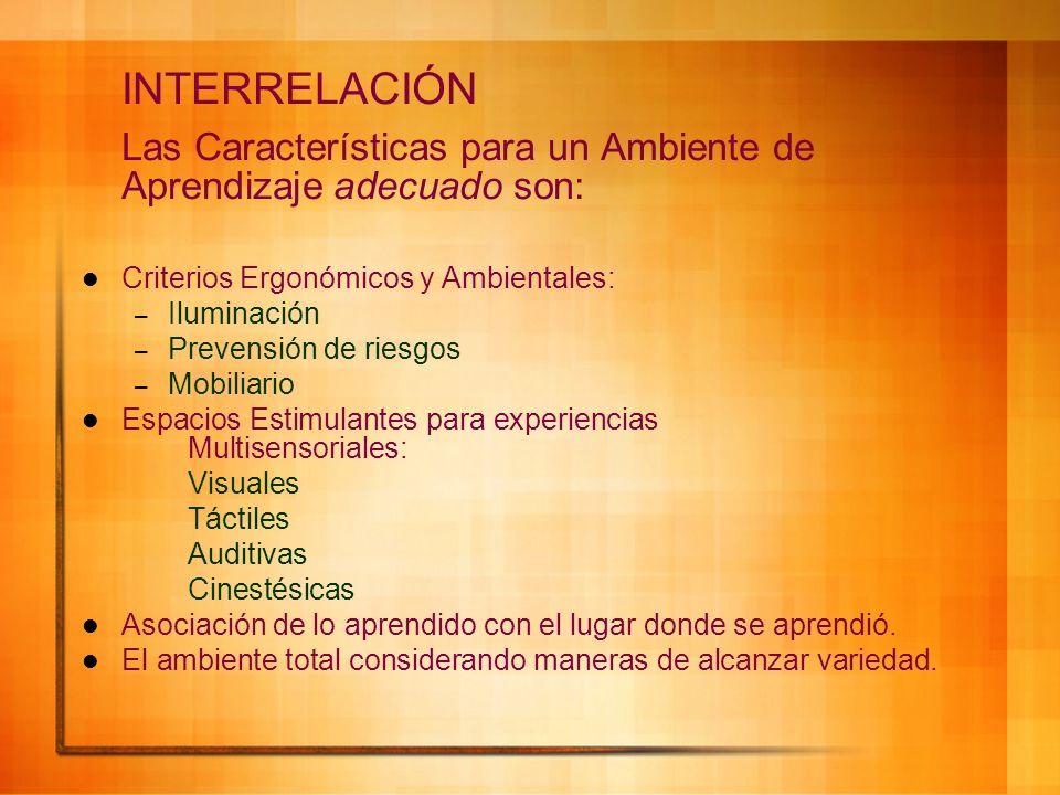 INTERRELACIÓN Las Características para un Ambiente de Aprendizaje adecuado son: Criterios Ergonómicos y Ambientales: