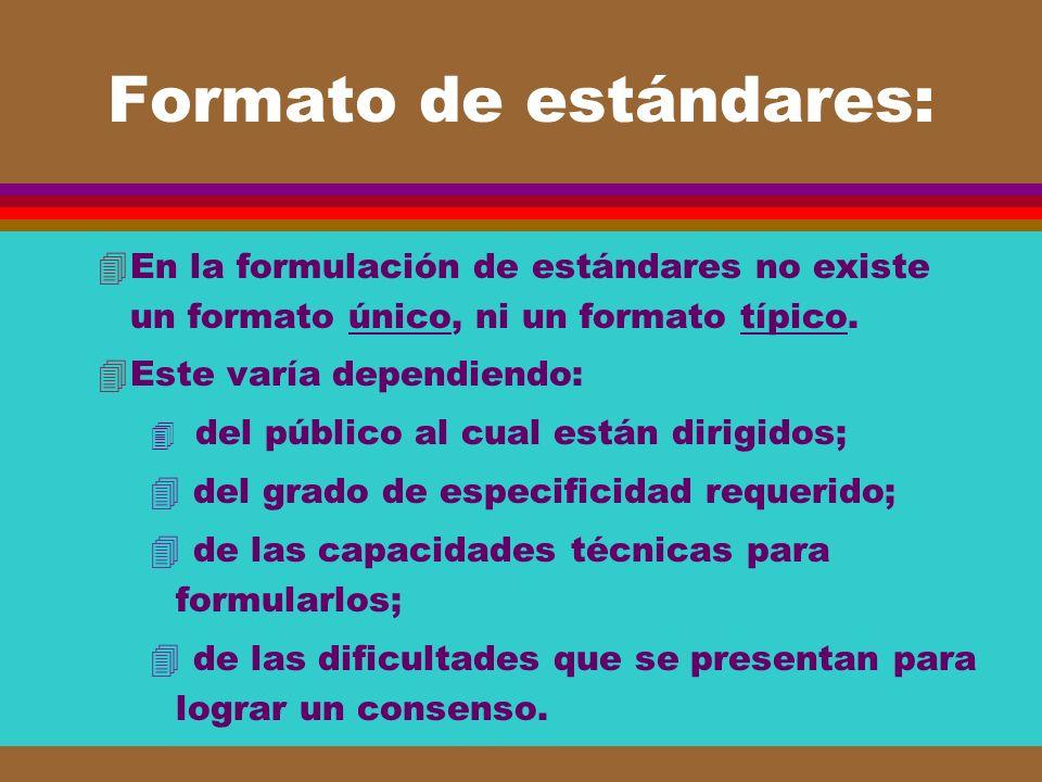 Formato de estándares: