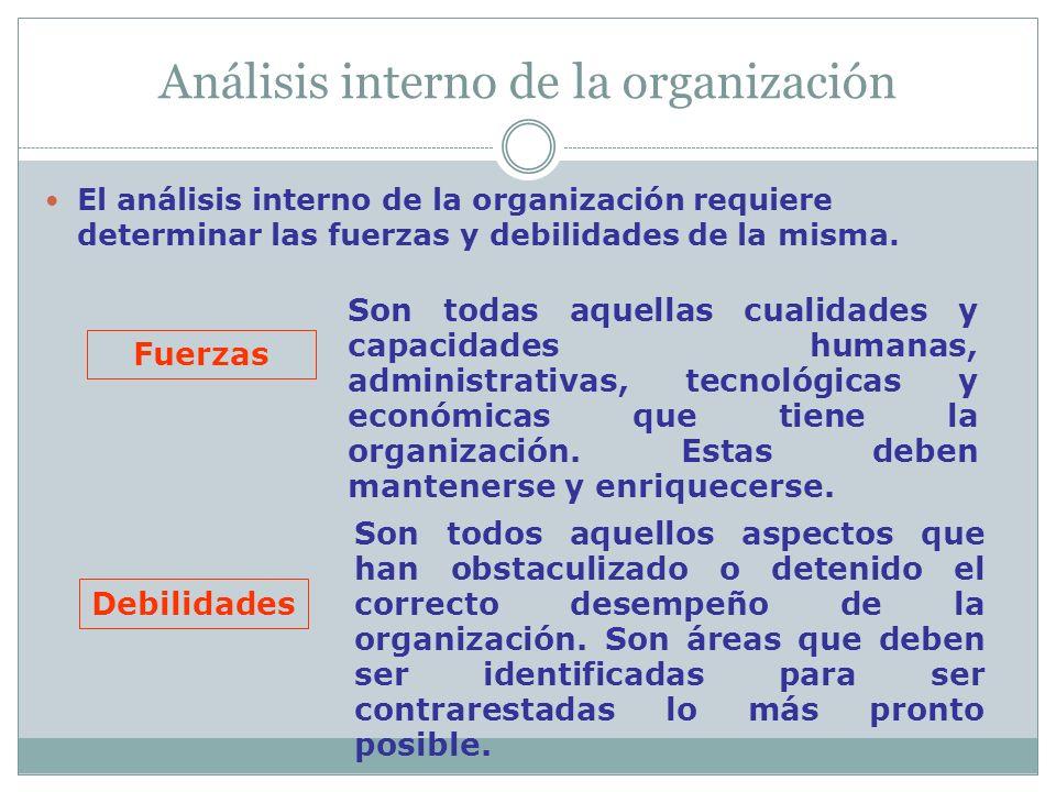 Análisis interno de la organización