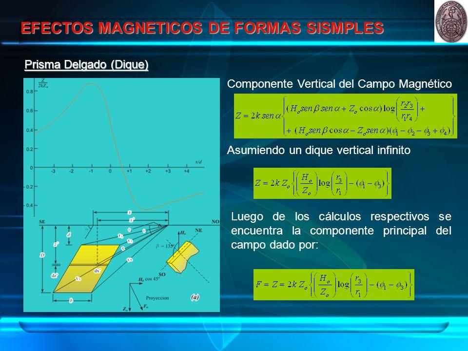 EFECTOS MAGNETICOS DE FORMAS SISMPLES